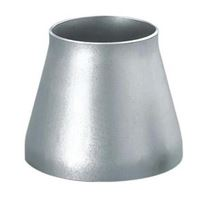 astm a403 WPXM-19 pipe fittings reducer manufacturers